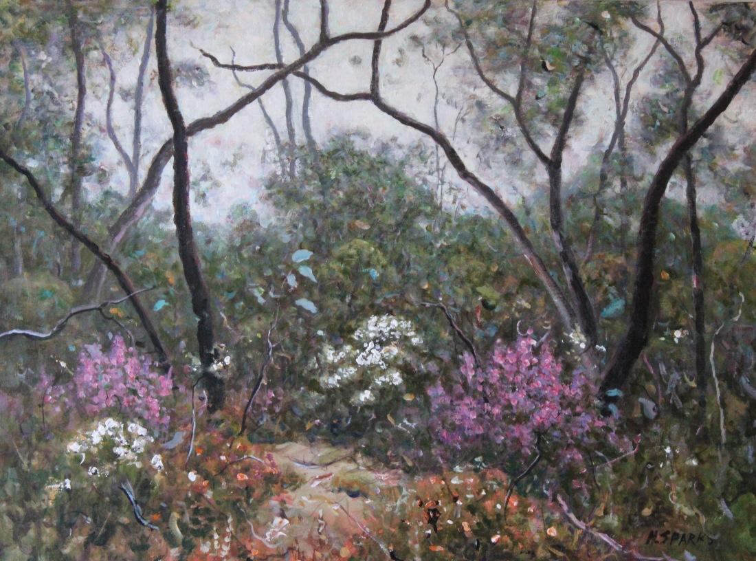 Grampians in Spring 46x61 acrylic