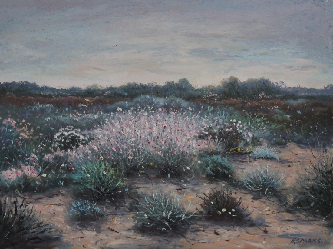 Wild flowers in the Whipstick Victoria oil 46x61